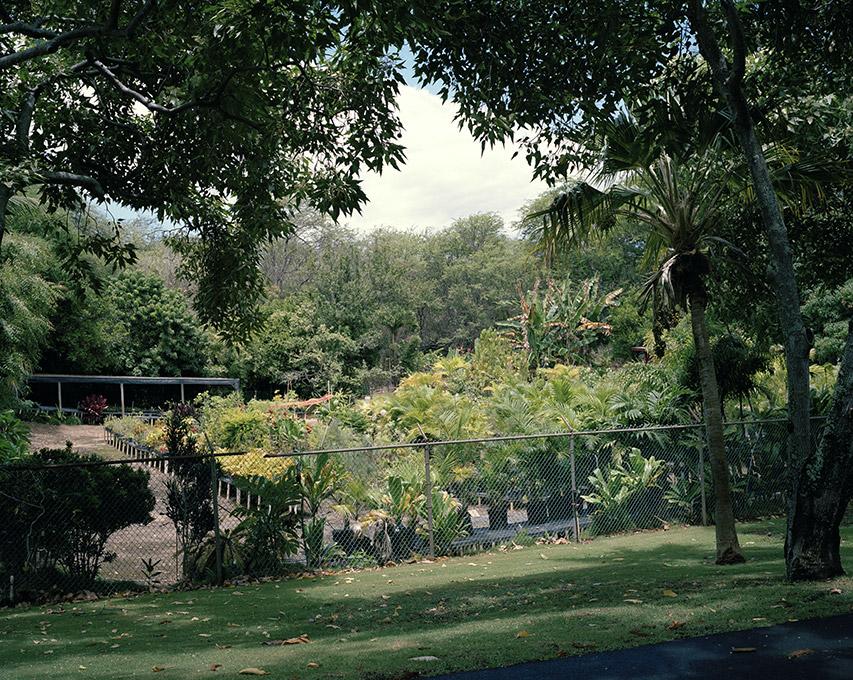 ... Maui Nui Botanical Gardens Nursey, 2013 ...